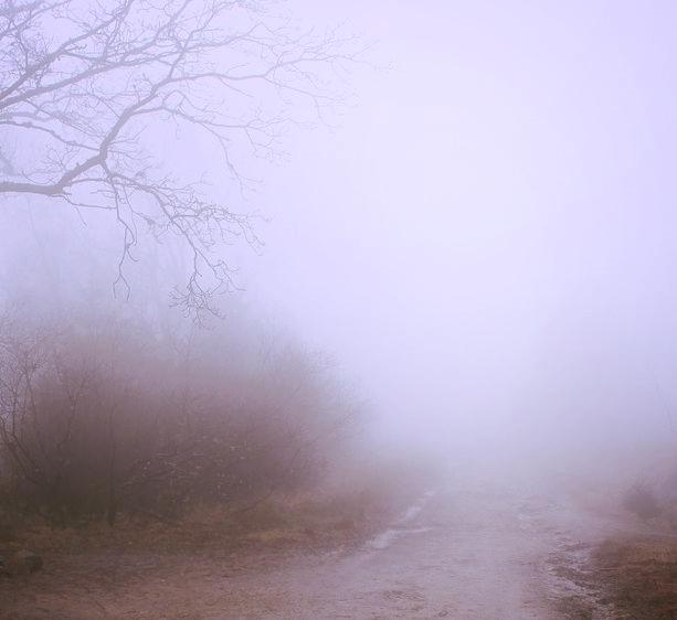 Mist of Unknown.jpg